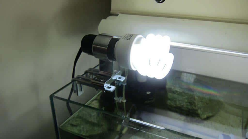 蛍光灯を使った簡易照明を作る