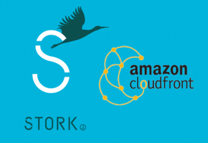 WordPressテーマ『STORK』でAWS Cloudfrontのモバイル判定を行う